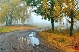 terra molhada