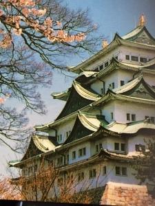 Nagoya Castle (kioto)